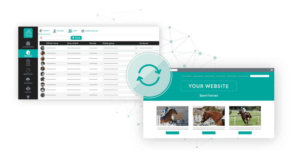 Connect your website