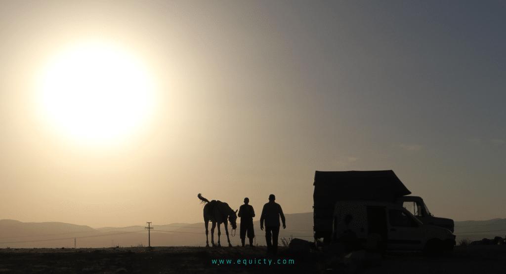 Le propriétaire du cheval établit une relation avec le dresseur de chevaux.